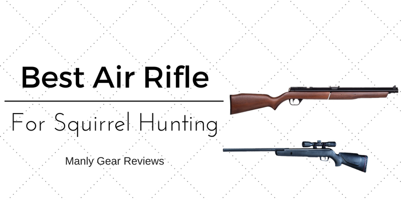 best air rifle for small game hunting