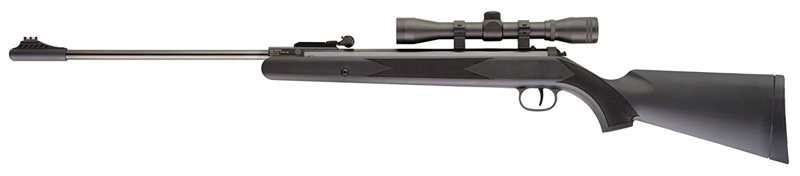 best ruger air rifle