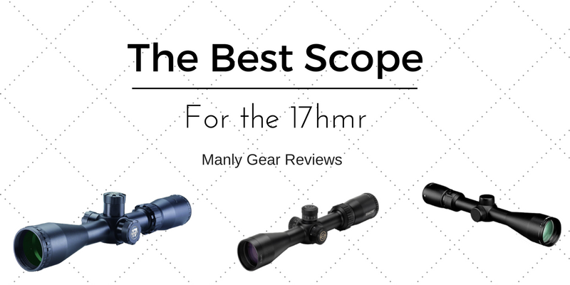 Best optic for 17hmr
